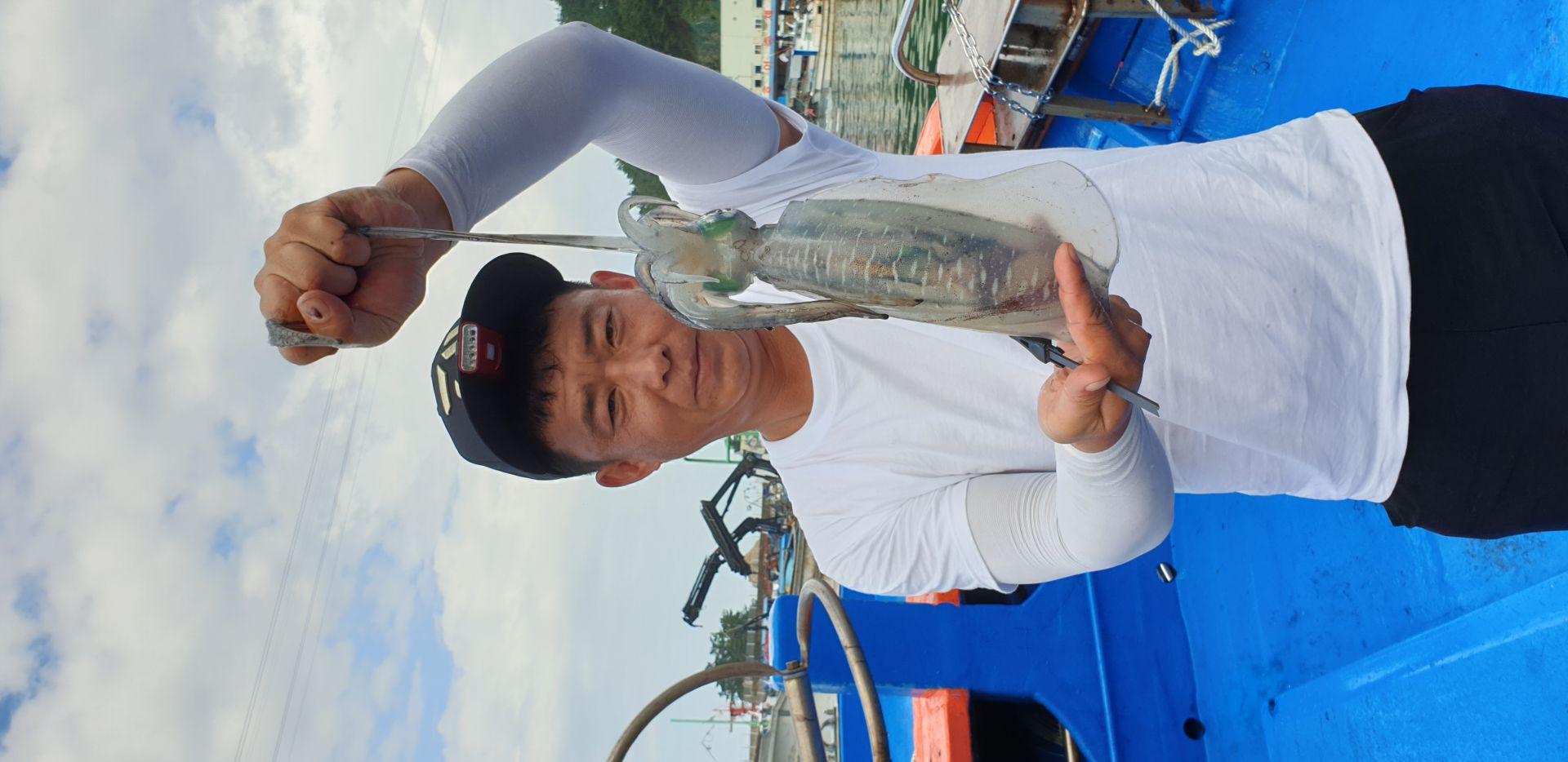 8윌29일 무늬오징어 조황